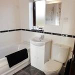 Luxury Lodges Wales - lon lodges bathroom