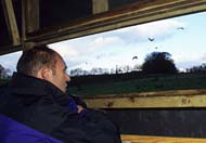 bird watching at Girin, Rhayader, Powys, Mid Wales