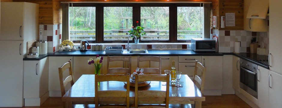 Mid Wales holiday accommodation at Lon Lodges - kitchen view
