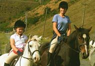 horse riding, Rhayader, Powys, Mid Wales
