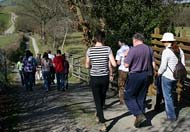 Lon Lodges Farm Walks & Nature Trails